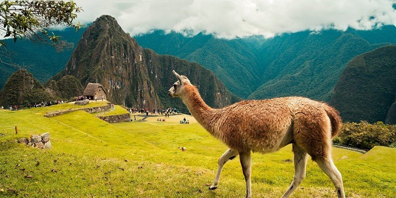 Work & Travel in Peru